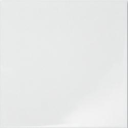 Zalakerámia Carneval ZBR 501 falicsempe 20 x 20 cm
